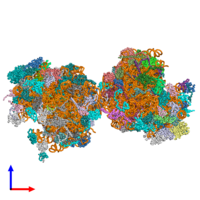 PDB 5obm coloured by chain and viewed from the front.