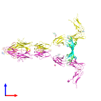 PDB 5t89 coloured by chain and viewed from the front.