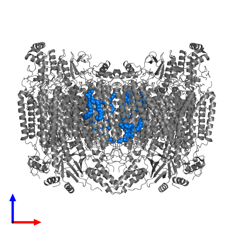 <div class='caption-body'>PDB entry 5wau contains 6 copies of (1S)-2-{[(2-AMINOETHOXY)(HYDROXY)PHOSPHORYL]OXY}-1-[(STEAROYLOXY)METHYL]ETHYL (5E,8E,11E,14E)-ICOSA-5,8,11,14-TETRAENOATE in assembly 1. This small molecule is highlighted and viewed from the front.</div>