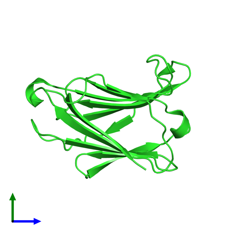 <div class='caption-body'><ul class ='image_legend_ul'>The deposited structure of PDB entry 5xg7 coloured by chain and viewed from the side. The entry contains: <li class ='image_legend_li'>1 copy of Galactoside-binding soluble lectin 13</li><li class ='image_legend_li'>There are no non-polymeric molecules</li></ul></li></ul></li></div>