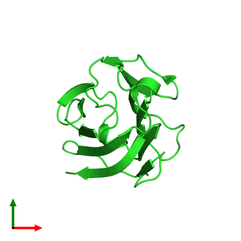<div class='caption-body'><ul class ='image_legend_ul'>The deposited structure of PDB entry 5xg7 coloured by chain and viewed from the top. The entry contains: <li class ='image_legend_li'>1 copy of Galactoside-binding soluble lectin 13</li><li class ='image_legend_li'>There are no non-polymeric molecules</li></ul></li></ul></li></div>
