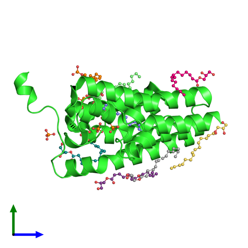 <div class='caption-body'><ul class ='image_legend_ul'>The deposited structure of PDB entry 5xj9 coloured by chain and viewed from the side. The entry contains: <li class ='image_legend_li'>1 copy of Glycerol-3-phosphate acyltransferase</li><li class ='image_legend_li'>2 non-polymeric entities<ul class ='image_legend_ul'><li class ='image_legend_li'>5 copies of PHOSPHATE ION</li><li class ='image_legend_li'>8 copies of (2S)-2,3-DIHYDROXYPROPYL(7Z)-PENTADEC-7-ENOATE</li></ul></li></div>