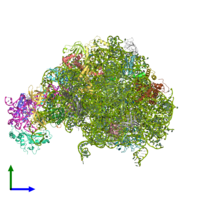 PDB 5xym coloured by chain and viewed from the side.