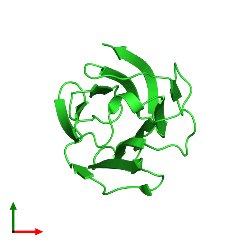<div class='caption-body'><ul class ='image_legend_ul'>The deposited structure of PDB entry 5y03 coloured by chain and viewed from the top. The entry contains: <li class ='image_legend_li'>1 copy of Galactoside-binding soluble lectin 13</li><li class ='image_legend_li'>There are no non-polymeric molecules</li></ul></li></ul></li></div>