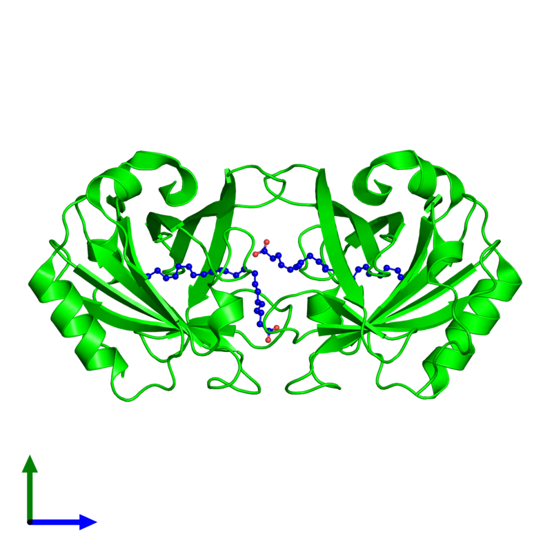 <div class='caption-body'><ul class ='image_legend_ul'>The deposited structure of PDB entry 5y5c coloured by chemically distinct molecules and viewed from the side. The entry contains: <li class ='image_legend_li'>2 copies of Beta-lactoglobulin</li><li class ='image_legend_li'>There is 1 non-polymeric molecule<ul class ='image_legend_ul'><li class ='image_legend_li'>2 copies of DOCOSA-4,7,10,13,16,19-HEXAENOIC ACID</li></ul></li></div>
