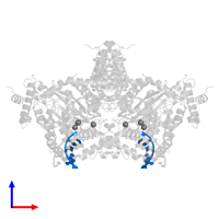 PDB 6dww contains 2 copies of DNA (5'-D(*GP*CP*GP*TP*GP*AP*A)-3') in assembly 1. This DNA molecule is highlighted and viewed from the front.
