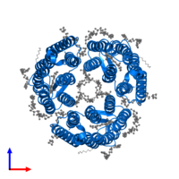 PDB 6ga6 contains 3 copies of Bacteriorhodopsin in assembly 1. This protein is highlighted and viewed from the front.