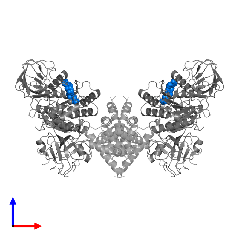 <div class='caption-body'>PDB entry 6of2 contains 2 copies of PHOSPHOTHIOPHOSPHORIC ACID-ADENYLATE ESTER in assembly 1. This small molecule is highlighted and viewed from the front.</div>
