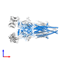 PDB 6pv8 contains 3 copies of Fusion protein of Neuronal acetylcholine receptor subunit beta-4 and Soluble cytochrome b562 in assembly 1. This protein is highlighted and viewed from the front.