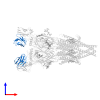 PDB 6pv8 contains 2 copies of Kappa Fab light chain in assembly 1. This protein is highlighted and viewed from the front.