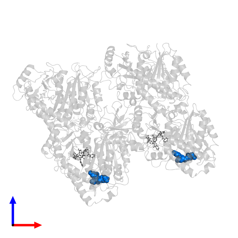 <div class='caption-body'>PDB entry 6quy contains 2 copies of GUANOSINE-5'-DIPHOSPHATE in assembly 1. This small molecule is highlighted and viewed from the front.</div>