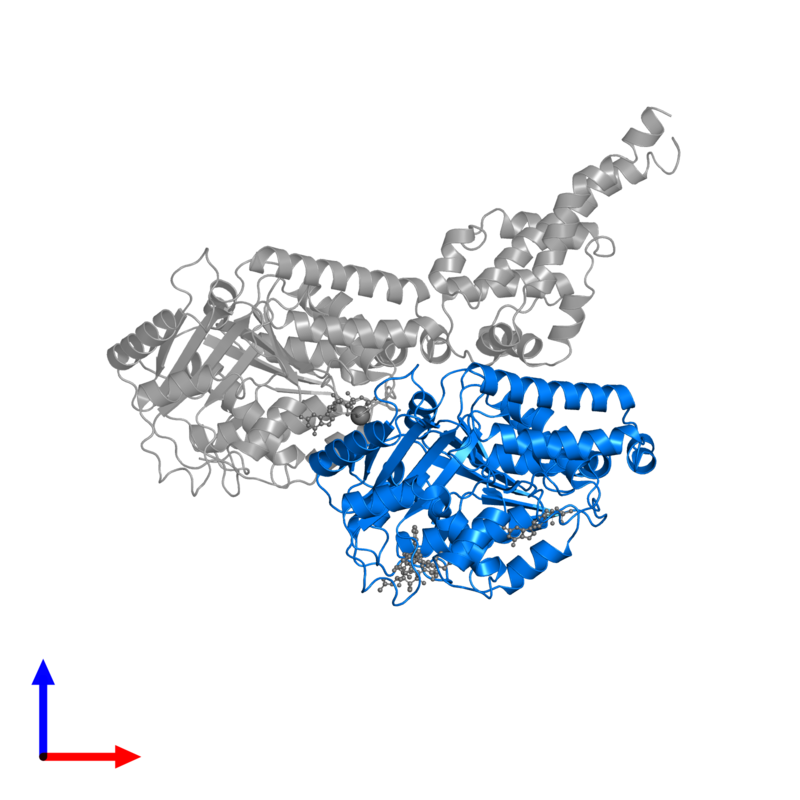 <div class='caption-body'>PDB entry 6rzb contains 1 copy of Tubulin beta chain in assembly 1. This protein is highlighted and viewed from the front.</div>