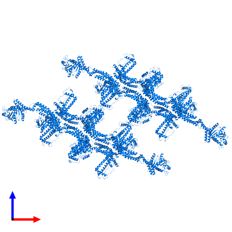<div class='caption-body'>PDB entry 6rzt contains 12 copies of Putative mitochondrial dynamin protein in assembly 1. This protein is highlighted and viewed from the front.</div>