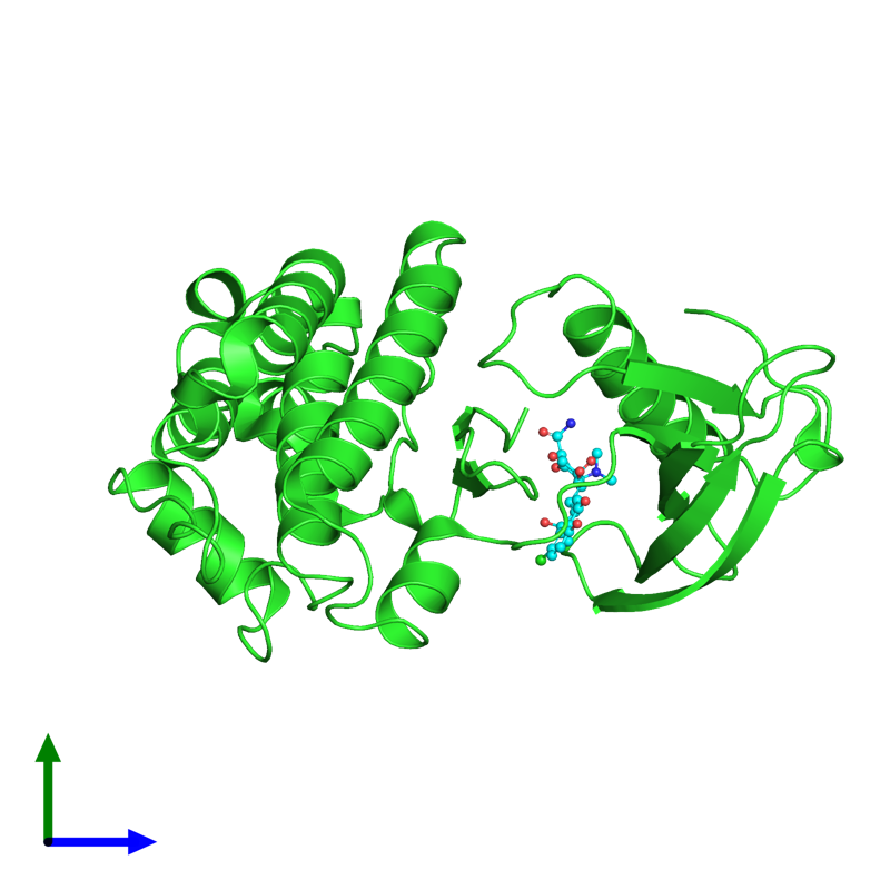 <div class='caption-body'><ul class ='image_legend_ul'> Monomeric assembly 1 of PDB entry 6umw coloured by chain and viewed from the side. This assembly contains:<li class ='image_legend_li'>One copy of Ephrin type-B receptor 1</li><li class ='image_legend_li'>One copy of 7-CHLOROTETRACYCLINE</li></ul></div>