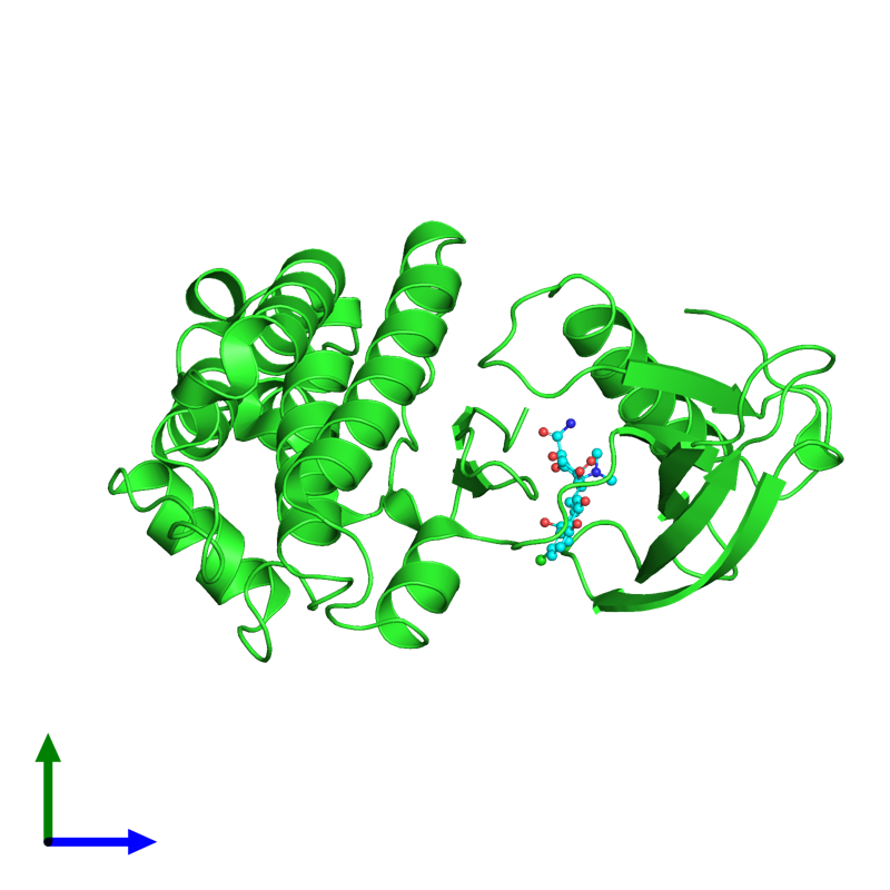 <div class='caption-body'><ul class ='image_legend_ul'>The deposited structure of PDB entry 6umw coloured by chain and viewed from the side. The entry contains: <li class ='image_legend_li'>1 copy of Ephrin type-B receptor 1</li><li class ='image_legend_li'>There is 1 non-polymeric molecule<ul class ='image_legend_ul'><li class ='image_legend_li'>1 copy of 7-CHLOROTETRACYCLINE</li></ul></li></div>