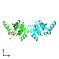 PDB 6w02 coloured by chain and viewed from the side.