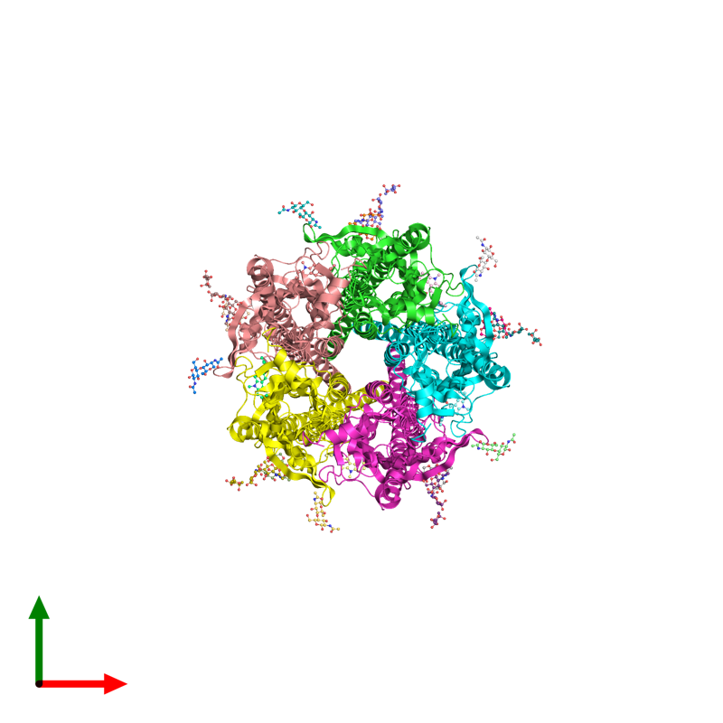 <div class='caption-body'><ul class ='image_legend_ul'>The deposited structure of PDB entry 6w1m coloured by chain and viewed from the top. The entry contains: <li class ='image_legend_li'>5 copies of 5-hydroxytryptamine receptor 3A</li><li class ='image_legend_li'>There is 1 non-polymeric molecule<ul class ='image_legend_ul'><li class ='image_legend_li'>5 copies of ondansetron</li></ul></li></div>