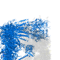 PDB 6w1m contains 5 copies of 5-hydroxytryptamine receptor 3A in assembly 1. This protein is highlighted and viewed from the front.