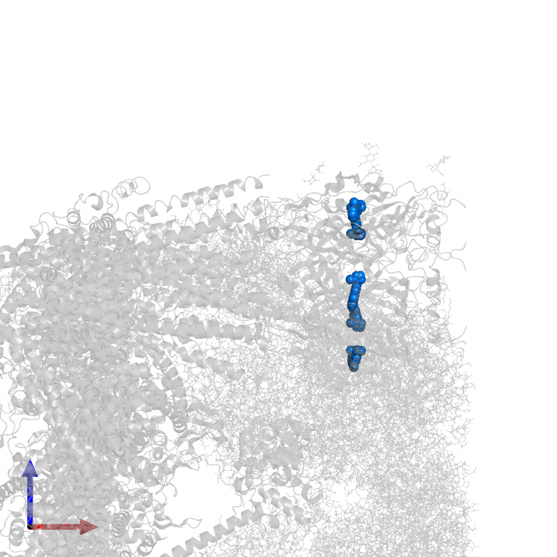 <div class='caption-body'>PDB entry 6w1m contains 5 copies of ondansetron in assembly 1. This small molecule is highlighted and viewed from the front.</div>