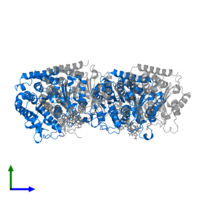 PDB 6wvm contains 2 copies of Tubulin beta-2B chain in assembly 1. This protein is highlighted and viewed from the side.