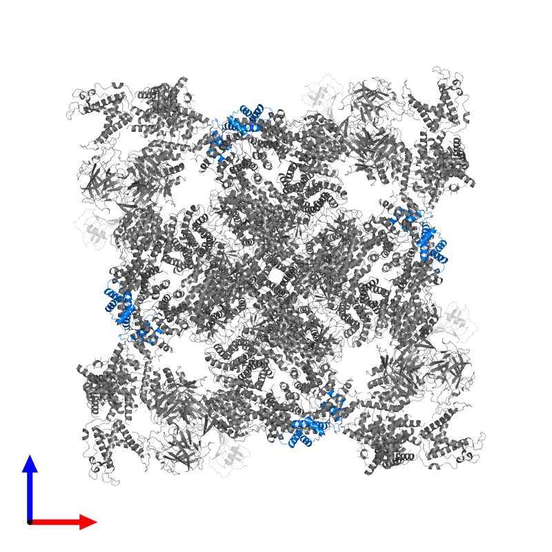 <div class='caption-body'>PDB entry 6x32 contains 4 copies of Calmodulin-1 in assembly 1. This protein is highlighted and viewed from the front.</div>