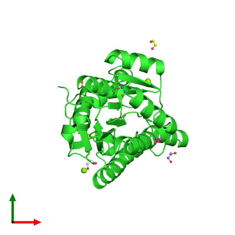 <div class='caption-body'><ul class ='image_legend_ul'>The deposited structure of PDB entry 6y10 coloured by chain and viewed from the top. The entry contains: <li class ='image_legend_li'>1 copy of R-specific alcohol dehydrogenase</li><li class ='image_legend_li'>2 non-polymeric entities<ul class ='image_legend_ul'><li class ='image_legend_li'>4 copies of MAGNESIUM ION</li><li class ='image_legend_li'>8 copies of 1,2-ETHANEDIOL</li></ul></li></div>