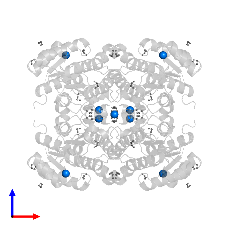<div class='caption-body'>PDB entry 6y10 contains 16 copies of MAGNESIUM ION in assembly 1. This small molecule is highlighted and viewed from the front.</div>