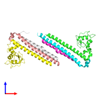 PDB 6yie coloured by chain and viewed from the front.