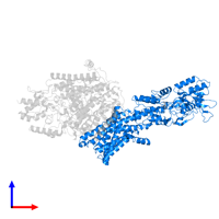 PDB 7bgy contains 1 copy of Potassium-transporting ATPase ATP-binding subunit in assembly 1. This protein is highlighted and viewed from the front.
