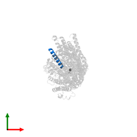 PDB 7bgy contains 1 copy of Potassium-transporting ATPase KdpF subunit in assembly 1. This protein is highlighted and viewed from the top.