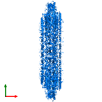 PDB 7bj2 contains 26 copies of Flagellar P-ring protein in assembly 1. This protein is highlighted and viewed from the top.
