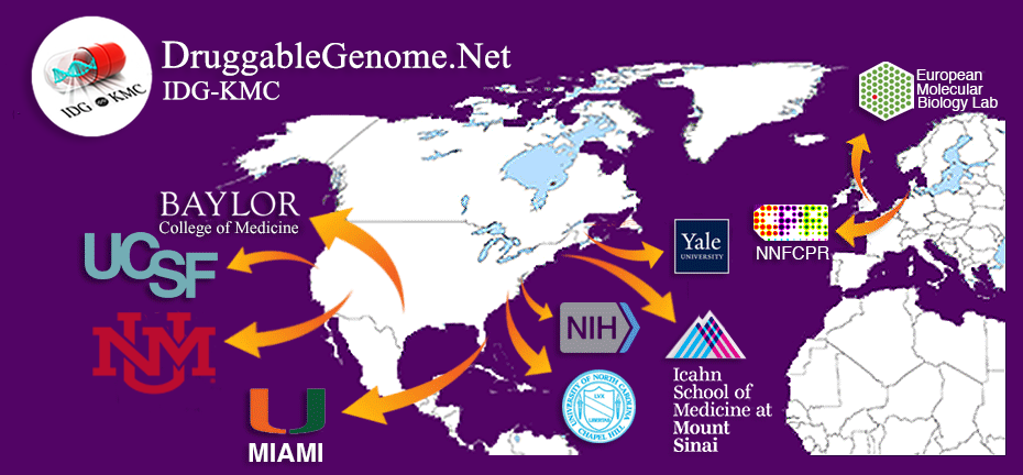 Map of Illuminating the Druggable Genome
