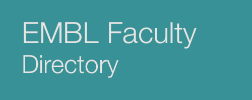 Look up EMBL Faculty