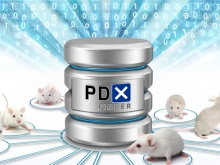 White mice next to data repository with PDX Finder logo