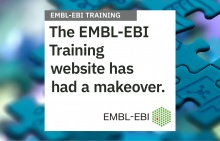 Text superimposed on image of puzzle: EMBL-EBI Training website has had a makeover