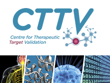 Centre for Therapeutic Target Validation