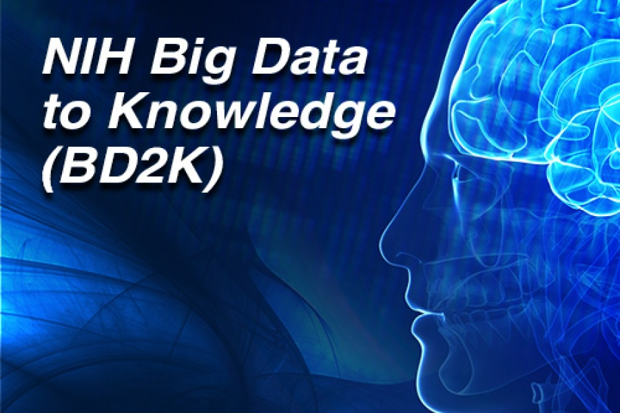 Big (protein) data to knowledge
