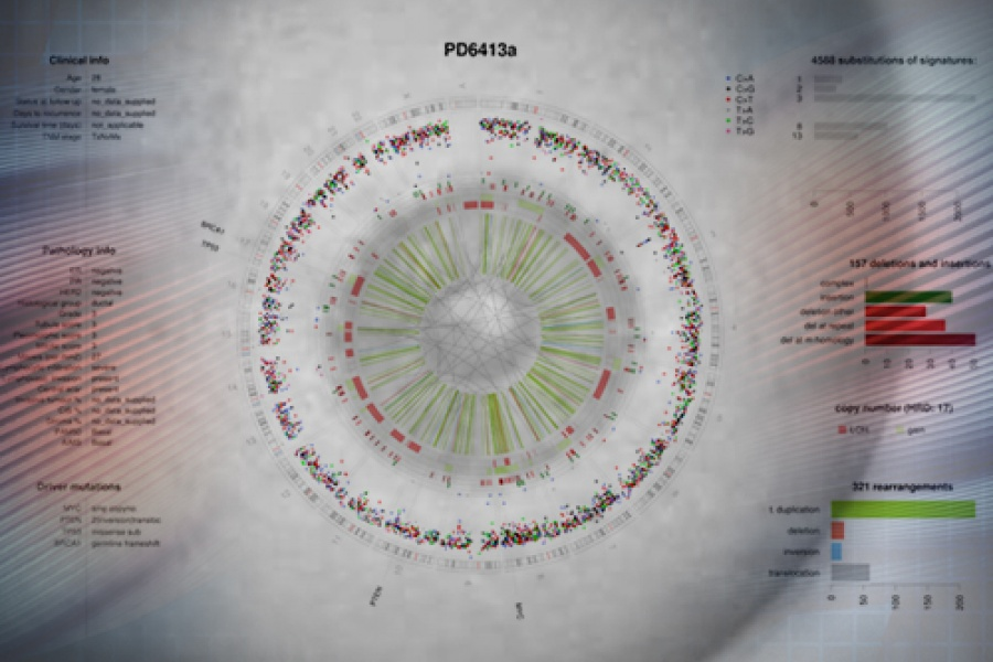 Largest-ever study of breast cancer genomes, 2 May 2016