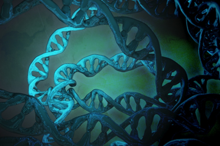 Artist's impression of the dark genome