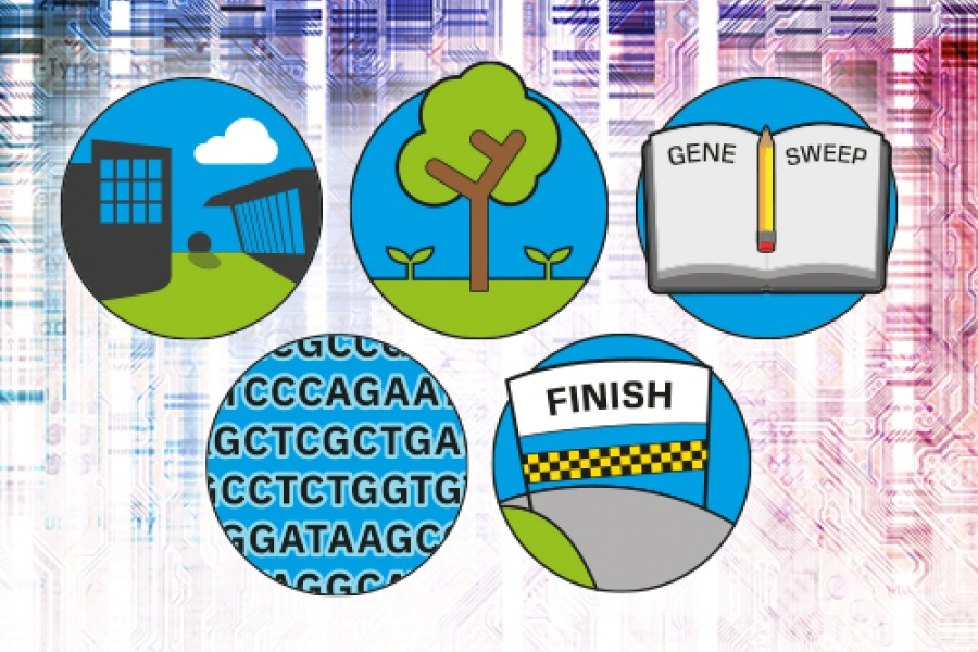 Five icons illustrating two buildings, a tree, a book, a genetic code and a finish line