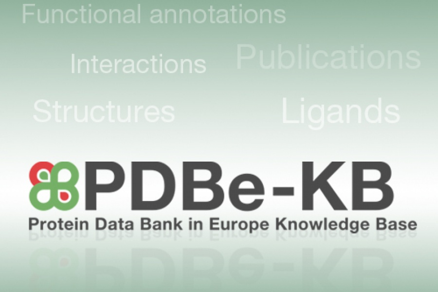 PDBe-KB logo on gradient background