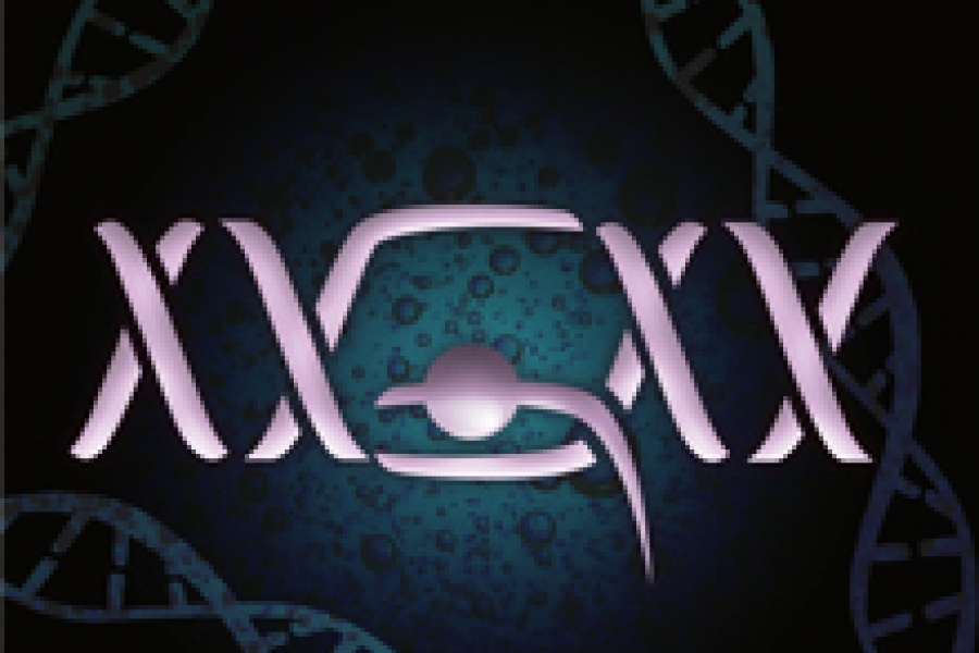 Geuvadis RNA seq study