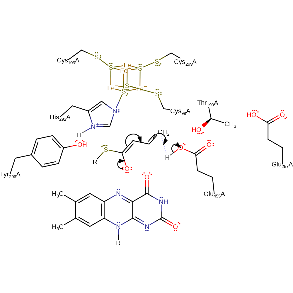 M-CSA Mechanism and Catalytic Site Atlas