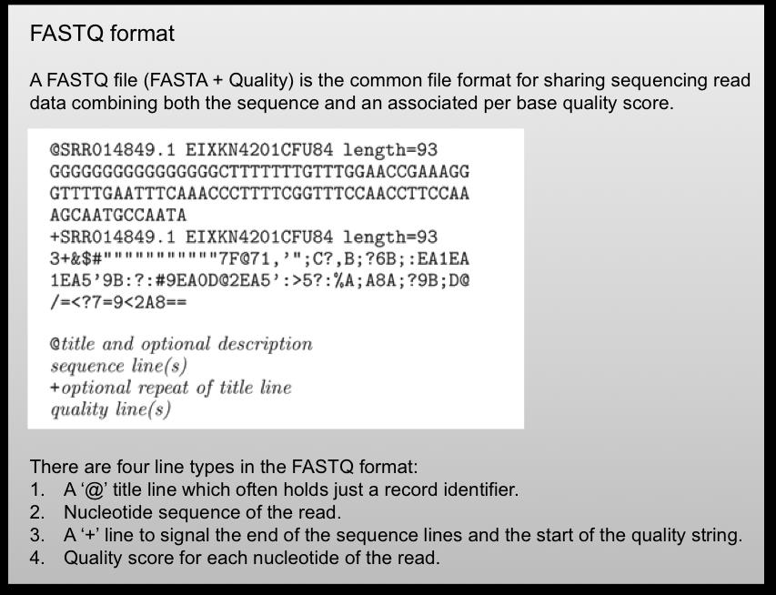 Fastq format