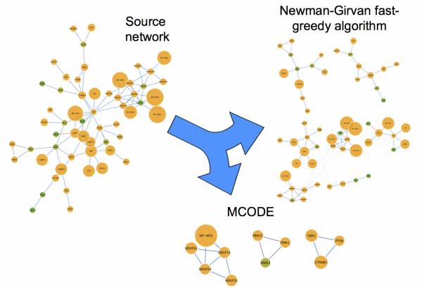 Communities defined using Newman-Girvan and MCODE