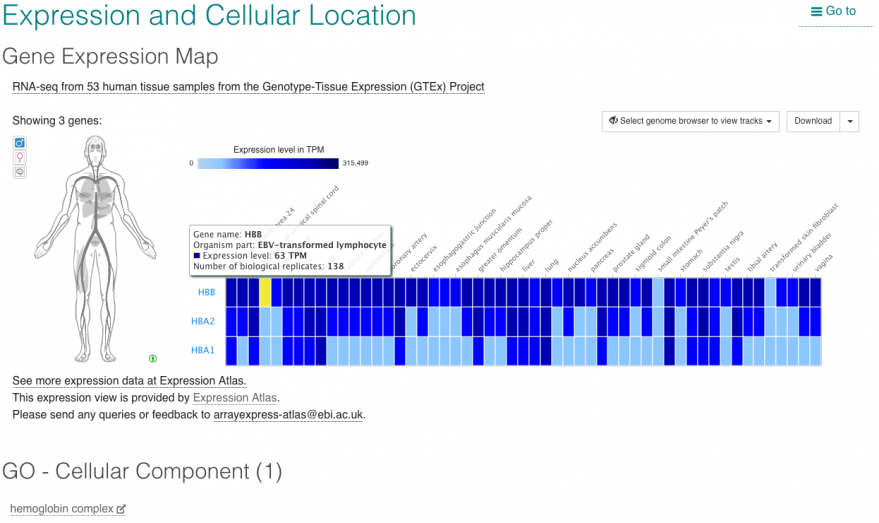 Complex details: gene expression and subcellular location