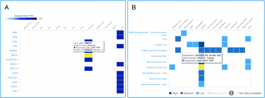 Data curation, analysis, search and visualization | EMBL-EBI