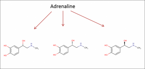 Adrenaline can have several possible structures