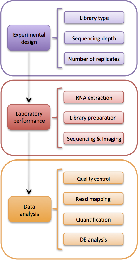 Overview of a RNA-seq experiment for detecting differential expression