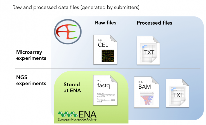 Types of experimental data that is stored in ArrayExpress
